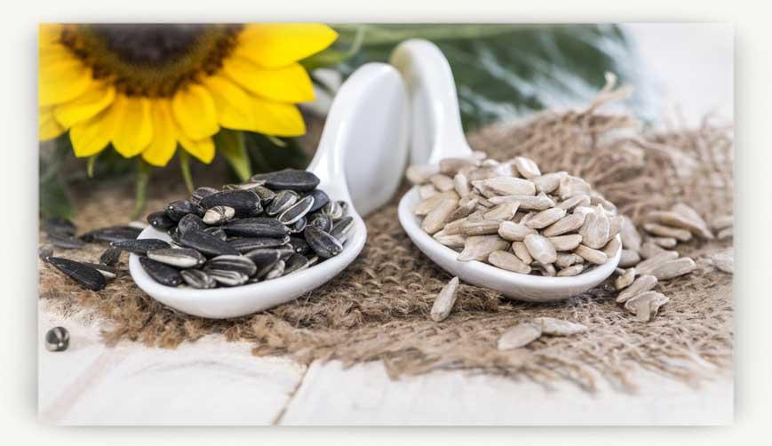 Можно ли беременным семечки жареные: польза и вред