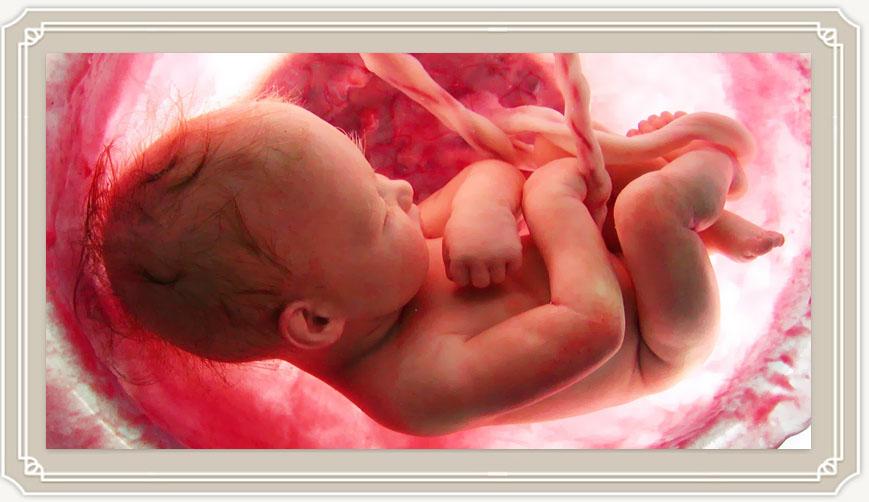 Многоводие при беременности на поздних сроках