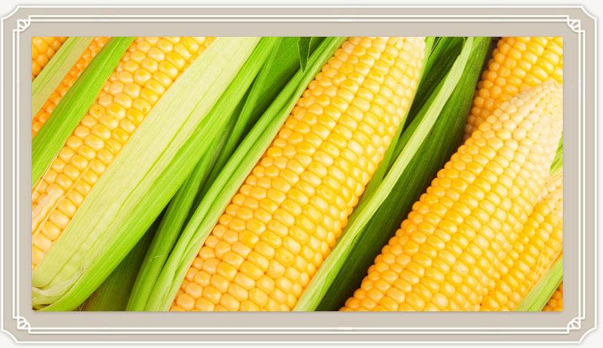 Можно ли есть кукурузу при грудном вскармливании?